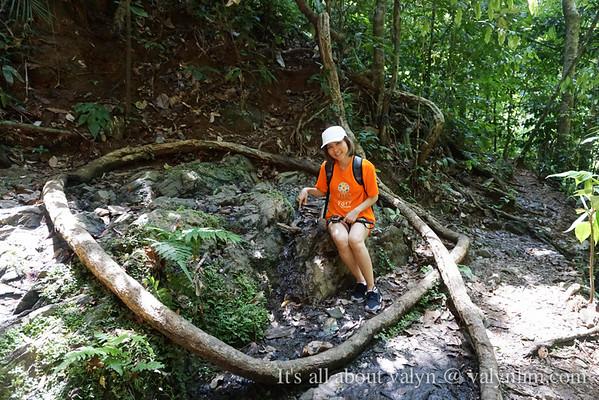 【柏隆皇家公园 Royal Belum】如何在热带雨林趴趴走?乘船屋必知的6个旅点