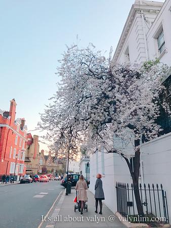伦敦2017初春告别。随写